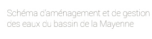 baseline_sage_mayenne
